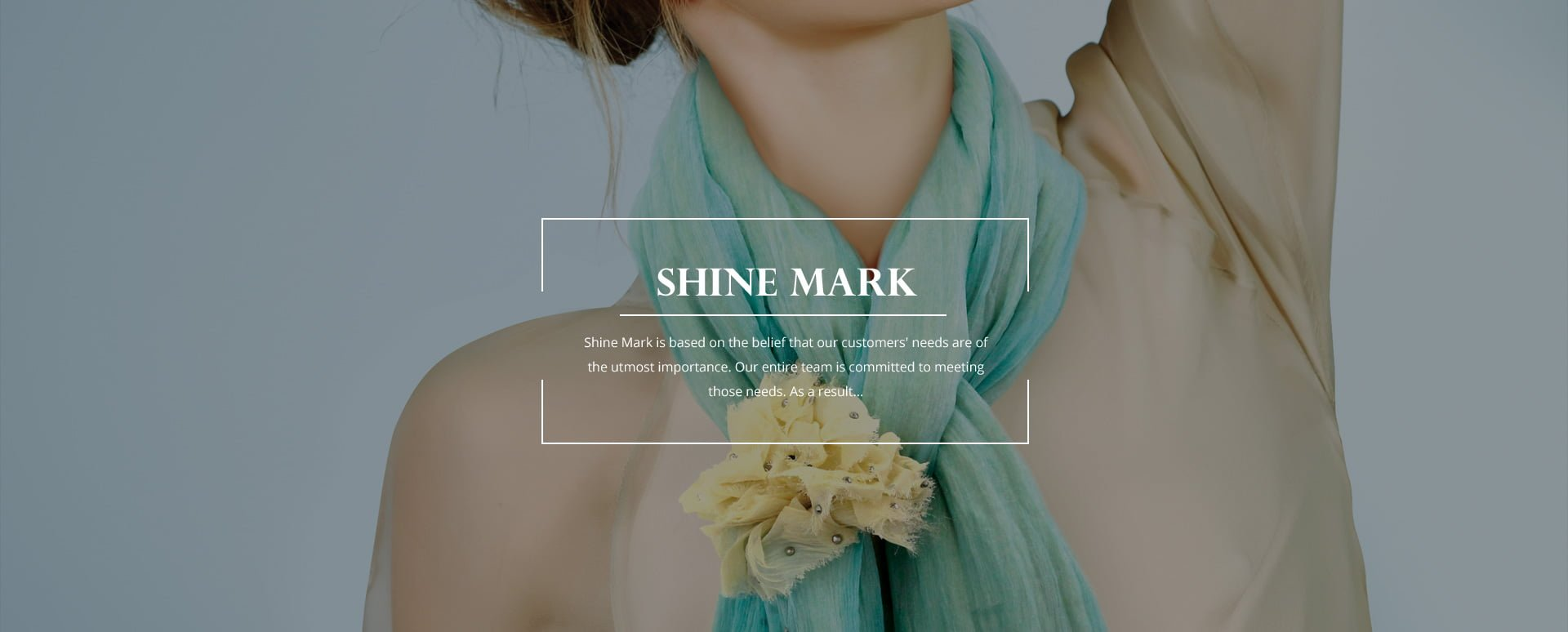 Ecommerce_shine_mark
